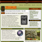 Dallas Zoo – Email Newsletter
